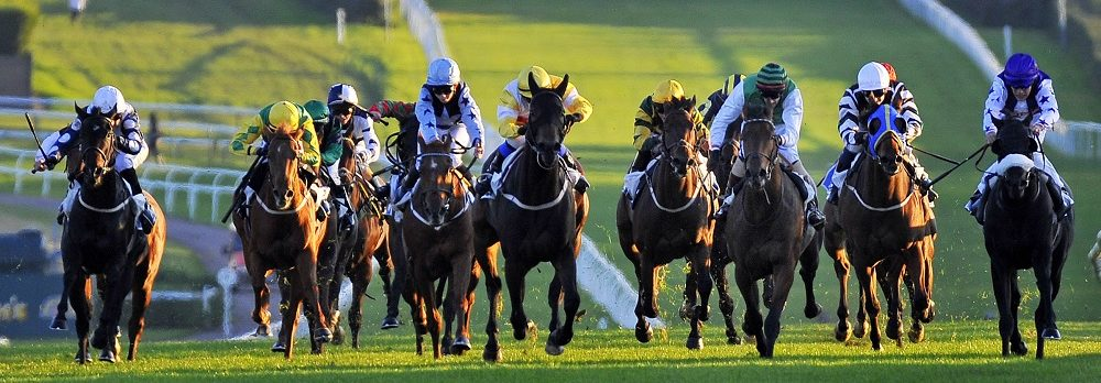 YOUR Horseracing News